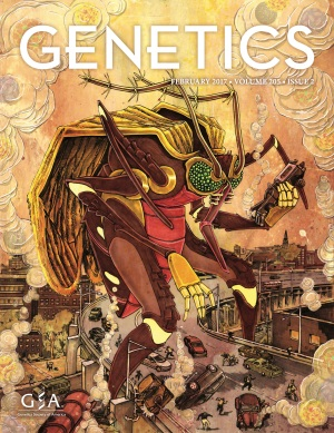 Genetics_Feb2017_Cover.jpg